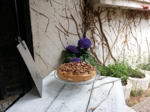 שילוב רקע למנה בצילום מזון