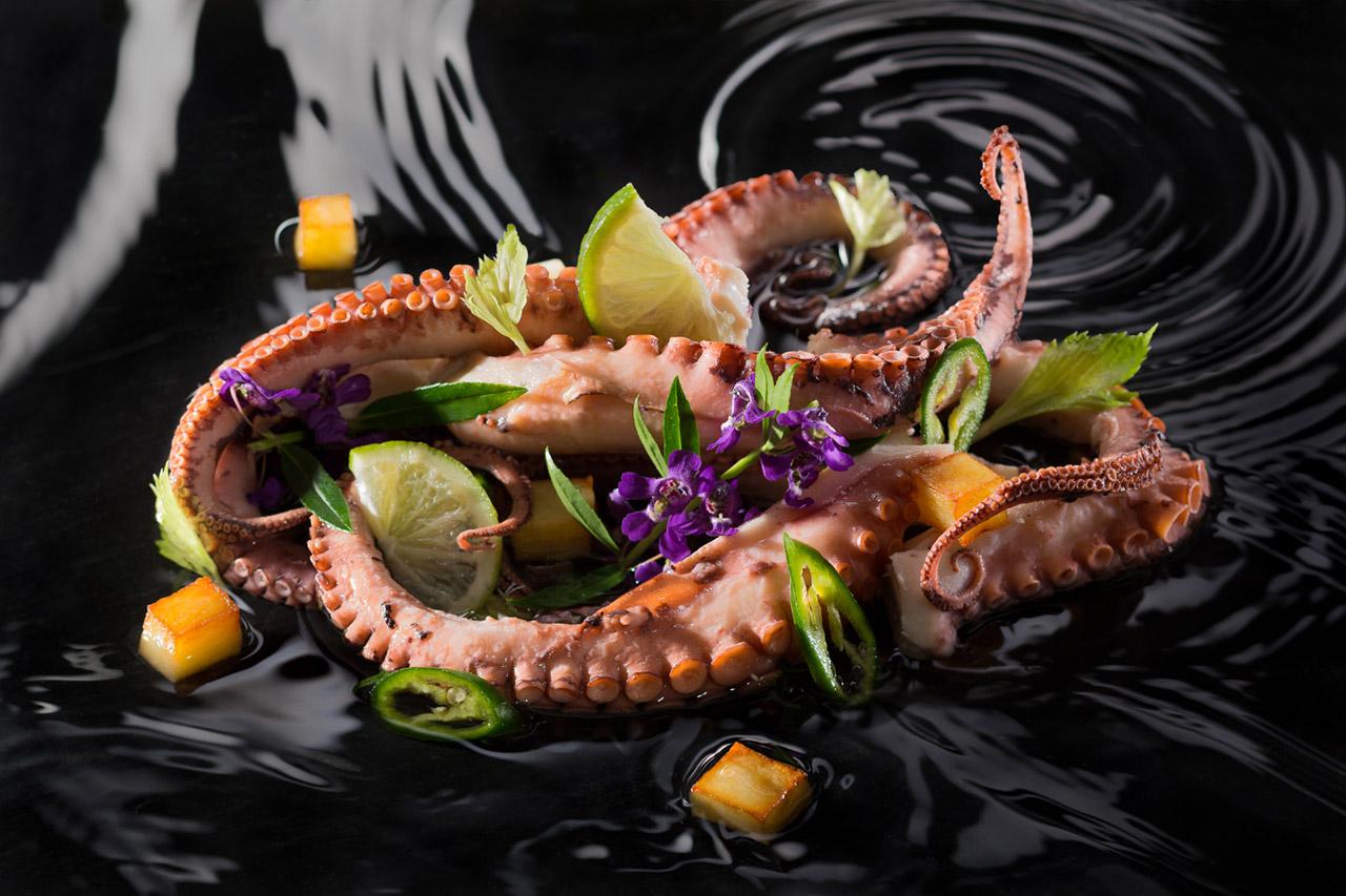 צלם מזון צילום מזון מקצועי צלם אוכל צילום אוכל מקצועי | בני גם זו לטובה